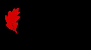 logos_Bizkaia_color